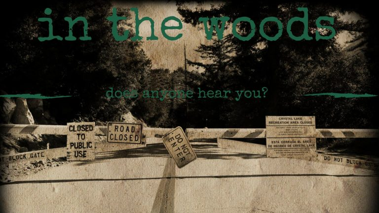 In The Woods Film by Colored Films llc amazon prime video poster