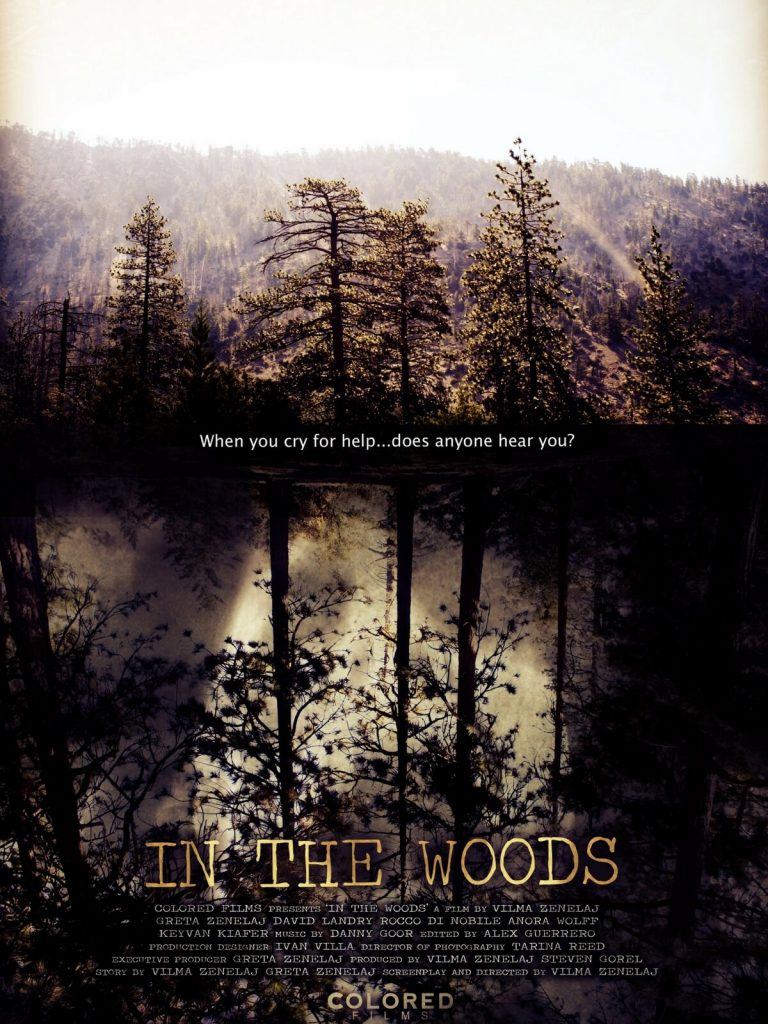 In The Woods Poster Colored Films LLC